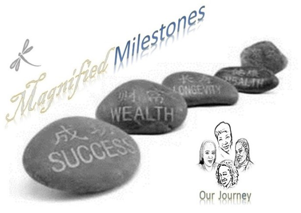 magnified milestones 1